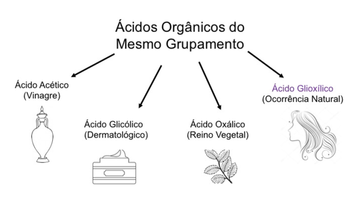 grupo orgânicos